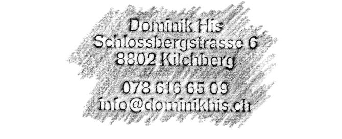 Dominik His, 8802 Kilchberg, 078 616 65 09